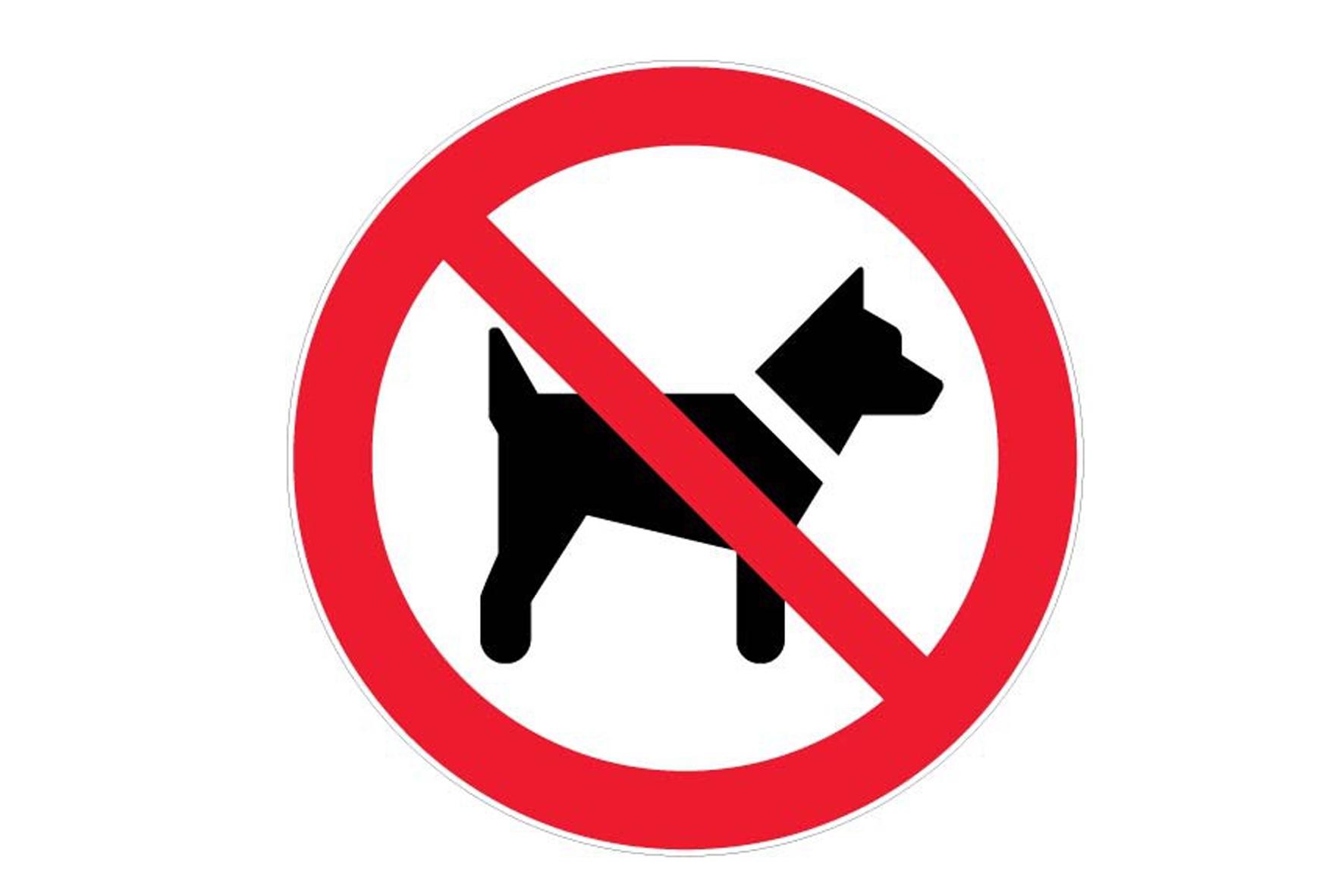 panneau pvc rond chien interdit achat en ligne ou dans notre magasin. Black Bedroom Furniture Sets. Home Design Ideas