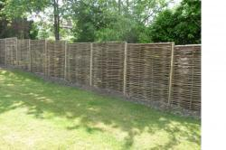 Clôture - Saule du rayon clôture - Achetez en ligne!