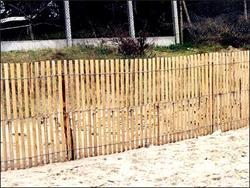 Clôture - Châtaignier du rayon clôture - Achetez en ligne!